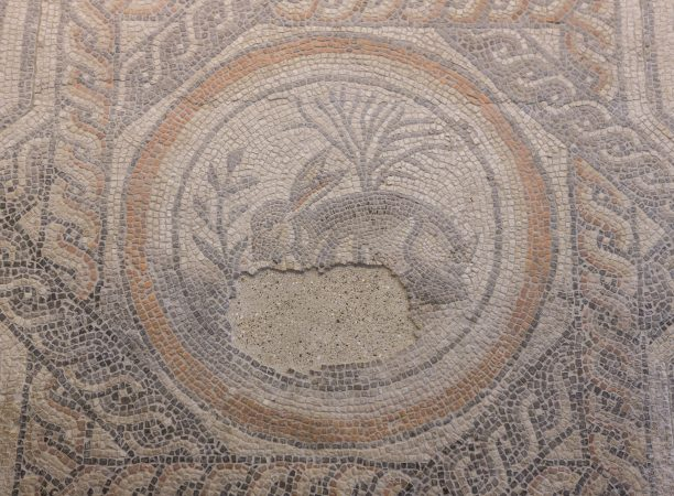 Image of Hare Mosaic