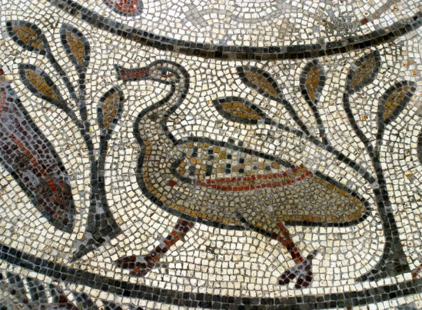 Mosaic of duck
