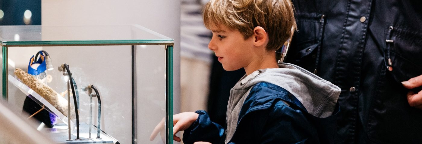 Boy looking into display case