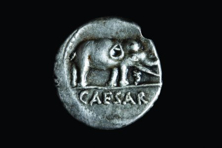 Elephant coin